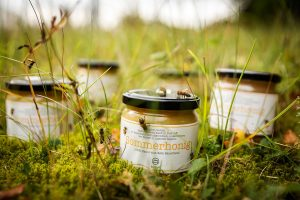 Bienenzucht bei burgbad
