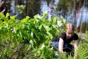 Baumpflanzaktion von burgbad für mehr Nachhaltigkeit